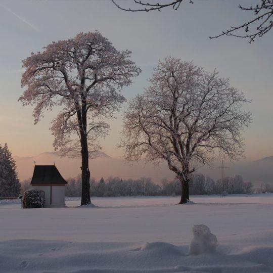 Ferienwohnung Winter 540x540 - Impressionen