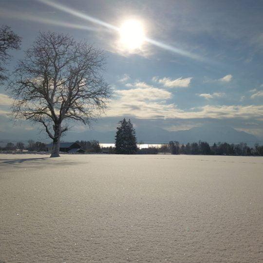 Seeblick Winter 540x540 - Impressionen