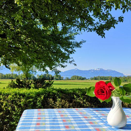 Sommer Terrasse 540x540 - Impressionen