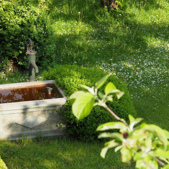 Brunnen Moier Hof 540x540 - Impressionen